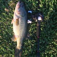 Squaw Creek Reservoir Fishing Report 09/22/2016
