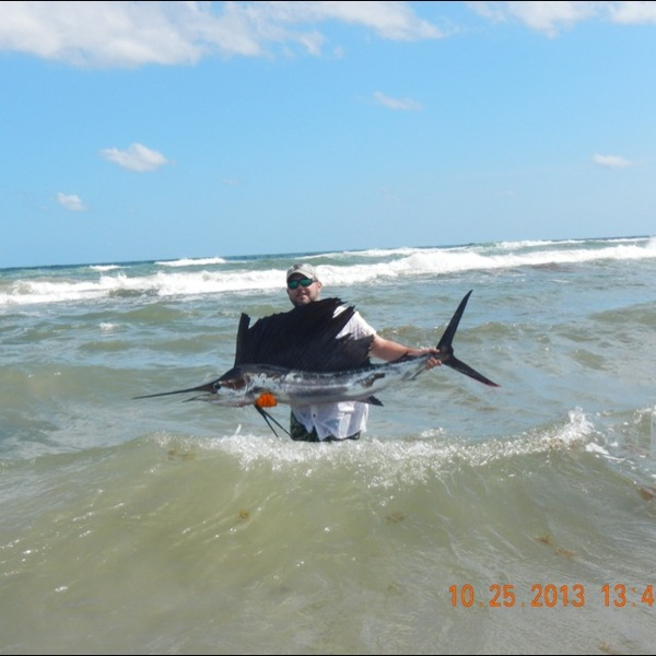 padre island national seashore fishing reports