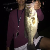 Pearland Ponds Fishing Report 04/02/2017