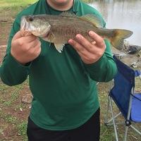 Alvin Ponds Fishing Report 02/21/2016