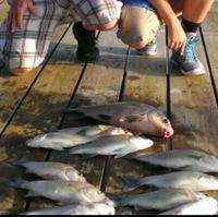 Lake Livingston Fishing Report 06/17/2016