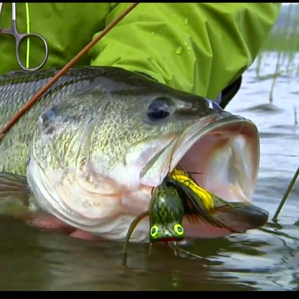 Off the Water Fishing Report 04/29/2014