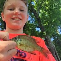 Lake Pickthorne Fishing Report 07/27/2017