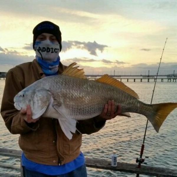 Packery Channel Fishing Report 02/06/2015