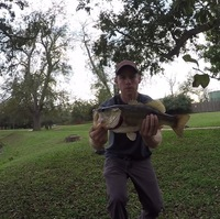 Bessies Creek Fishing Report 11/12/2015