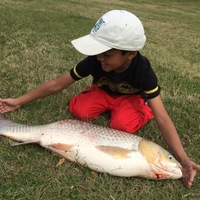Cypress Creek Fishing Report 03/01/2016