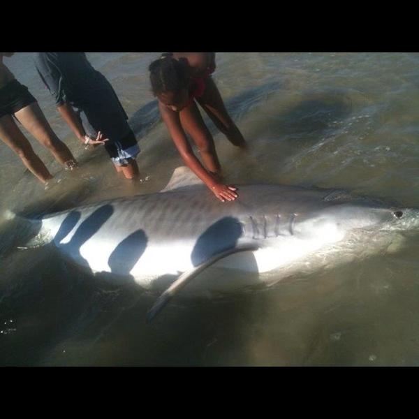 Lake Nassau Fishing Report 10/21/2012