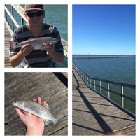 Goose Island State Park Fishing Report 05/02/2017