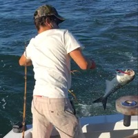 Other Saltwater Fishing Report 09/01/2016