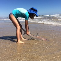Padre Island National Seashore Fishing Report 10/16/2016