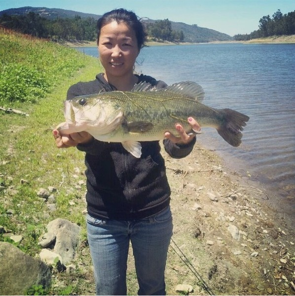 Lexington reservoir fishing reports fishingscout mobile app for Shaver lake fishing report