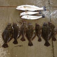 San Luis Pass Fishing Report 09/07/2015