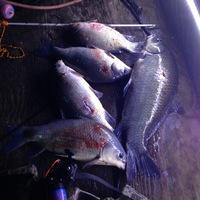 Fannett Ponds Fishing Report 05/14/2014