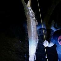 Rio Grande River Fishing Report 06/03/2014