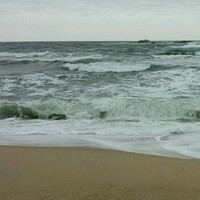 Other saltwater, South Korea Fishing Report 10/21/2014