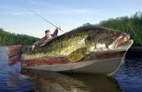 Canyon Lake Fishing Report 08/26/2016