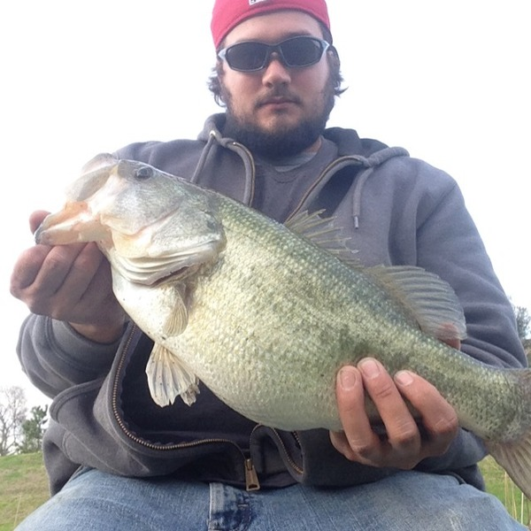 Houston Ponds Fishing Report 01/26/2015