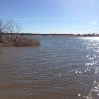 Lake Bonham Fishing Report 01/17/2014