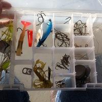 Lake Alan Henry Fishing Report 12/30/2013