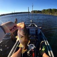 Lake Naconiche Fishing Report 10/16/2015