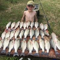 Somerville Lake Fishing Report 06/20/2017