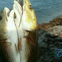 Corpus Christi Bay Fishing Report 07/24/2017