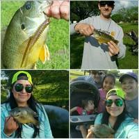 Fishing Report 04/20/2017