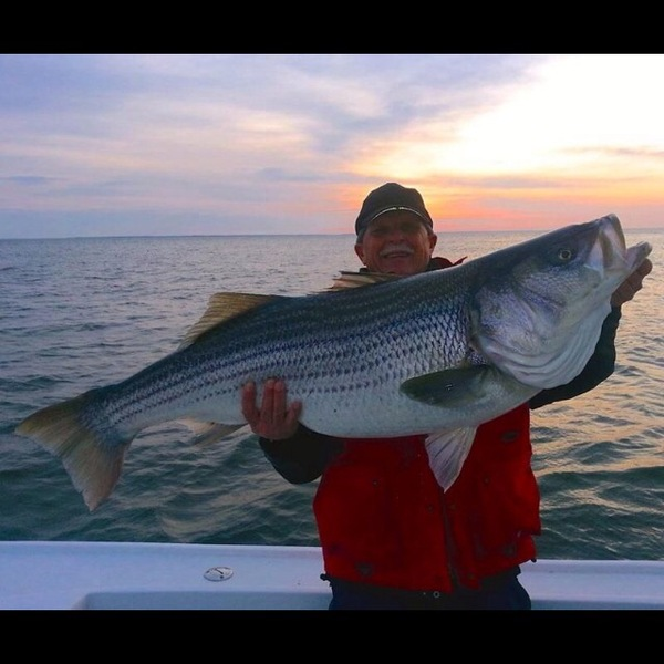 Chesapeake Bay Fishing Report 04/03/2014