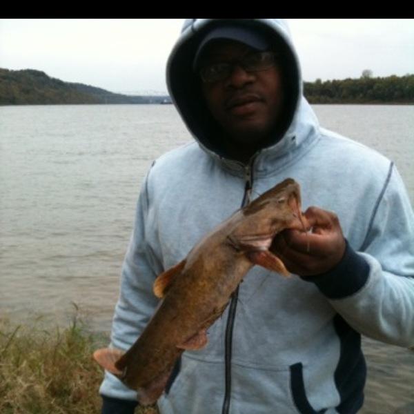 Flathead catfish central ohio river brandenburg ky for Odnr fishing report