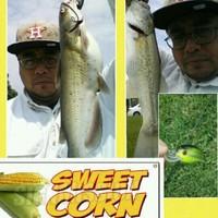 Missouri City Ponds Fishing Report 05/15/2016