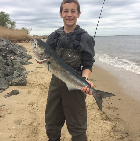 Sandy hook nj fishing license for Queen mary fishing report