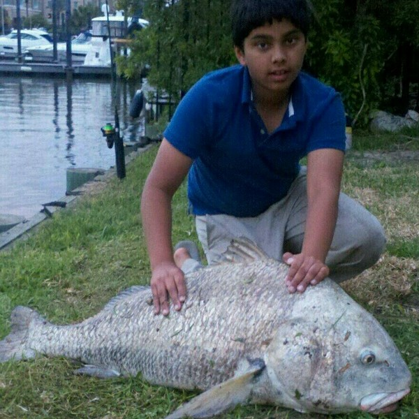 Lake Corpus Christi Fishing Reports Fishingscout Mobile App
