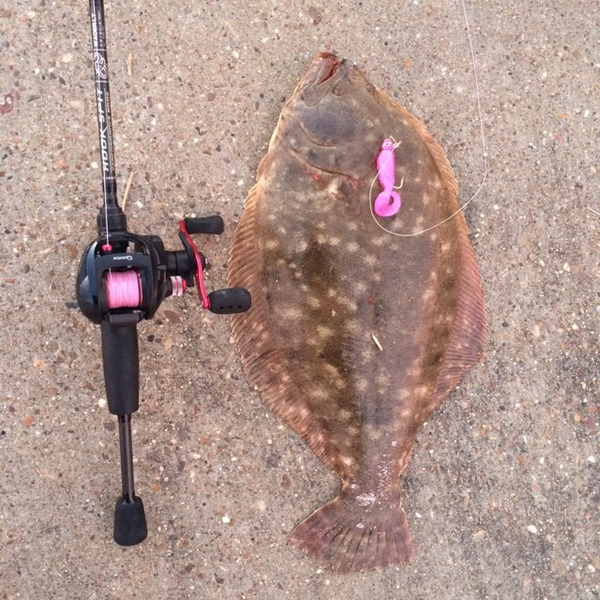Taylor Lake  Fishing Report 10/28/2015