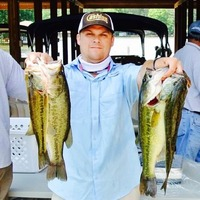 Lake gaston fishing reports fishingscout mobile app for Lake gaston fishing report