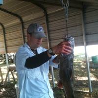 Lake Limestone Fishing Report 06/29/2014
