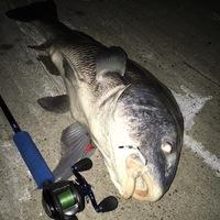 Taylor Lake  Fishing Report 07/25/2016