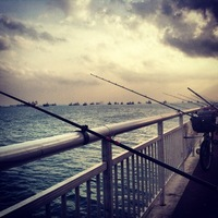 Other Saltwater Fishing Report 03/22/2014