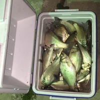 Nueces River Fishing Report 03/05/2016