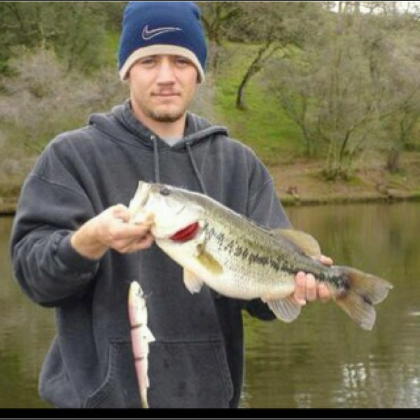 Largemouth bass lake amador ca fishingscout for Lake amador fishing report