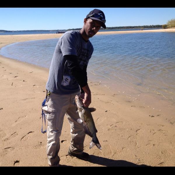 Channel catfish lake texoma tx ok fishingscout for Lake texoma fishing report