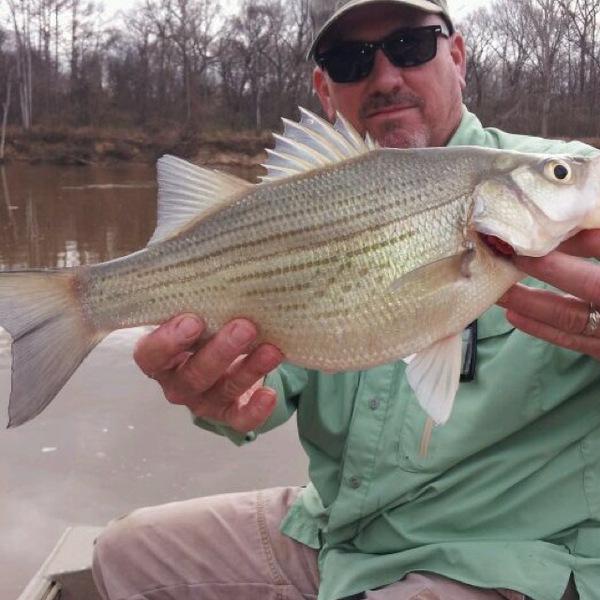 Sabine River Fishing Report 02/20/2014