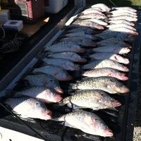 Lake Kickapoo Fishing Report 04/21/2012