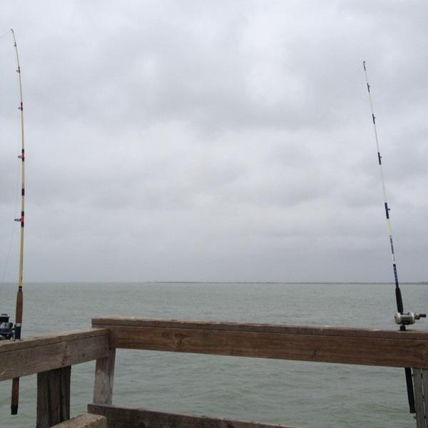 Gafftopsail catfish copano bay tx fishingscout for Copano bay fishing