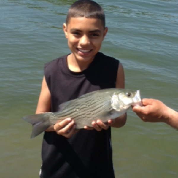 Calaveras lake fishing reports fishingscout mobile app for Stillhouse lake fishing report