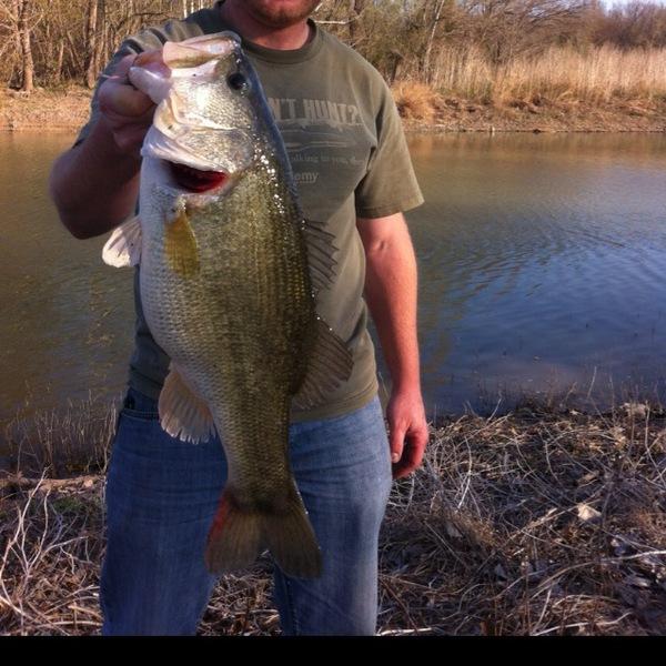 largemouth bass benbrook lake tx fishingscout