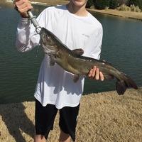 Allen Ponds Fishing Report 02/24/2017