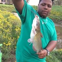 Missouri City Ponds Fishing Report 03/06/2017