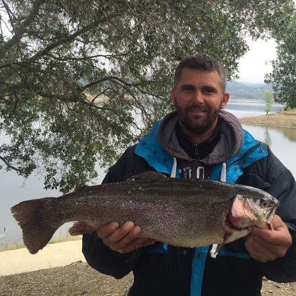 Lake trout lake amador ca fishingscout for Lake amador fishing report