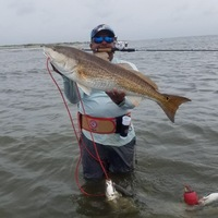 Chandeleur Sound Complex Fishing Report 08/11/2017