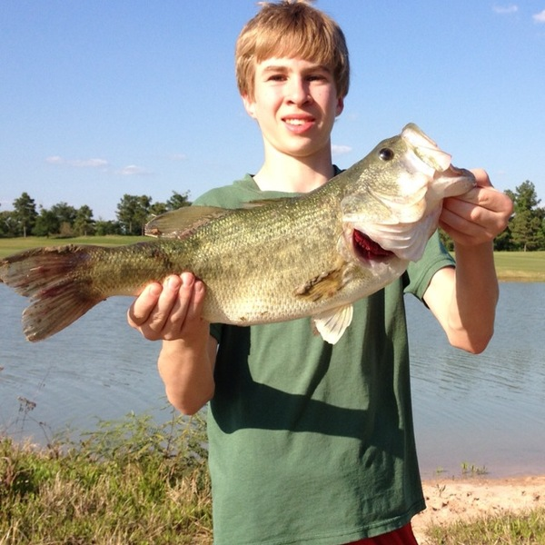 The Woodland Ponds Fishing Report 07/06/2013
